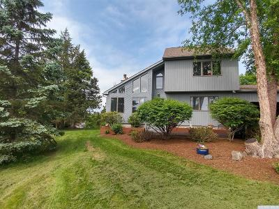 Greene County Single Family Home For Sale: 36 Dutchman