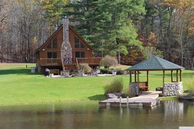 Greene County Single Family Home For Sale: Plattekill Lot 22.1 Road