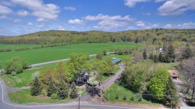 Copake Single Family Home For Sale: 1248 County Route 7a