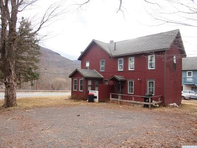 Hunter NY Single Family Home For Sale: $125,000