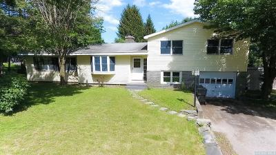 Claverack Single Family Home For Sale: 218 Route 9h