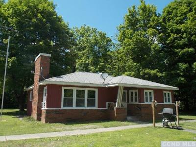 Columbia County Single Family Home For Sale: 614 State Route 82