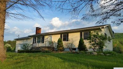 Windham Single Family Home For Sale: 410 Big Hollow
