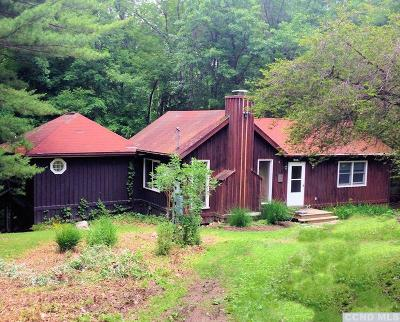 Copake Single Family Home For Sale: 34 Pond Hill Road