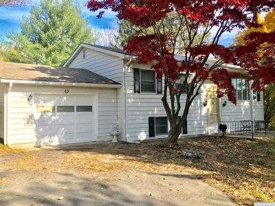 East Durham NY Single Family Home Accepted Offer: $189,000