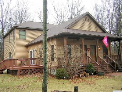 Greene County Single Family Home For Sale: 1459 River Road