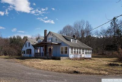 Columbia County Single Family Home For Sale: 149 Eagle Street
