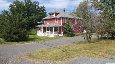 Windham Single Family Home For Sale: 205 State Route 296