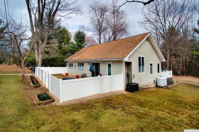 Copake Single Family Home For Sale: 419 Southwest Colony Road