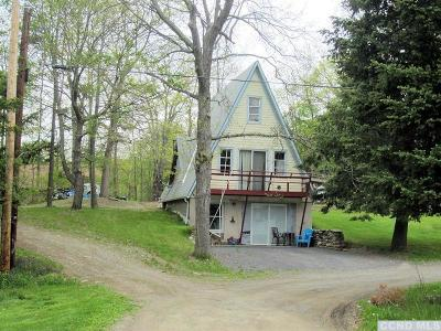 Copake Single Family Home For Sale: 240 SW Colony Road