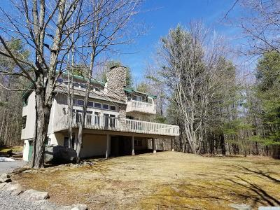 Windham NY Single Family Home For Sale: $399,000