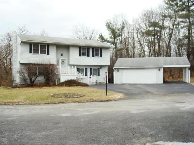 Albany County Single Family Home For Sale: 6 Hunting Ridge