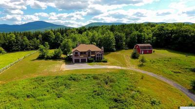 Greene County Single Family Home For Sale: 757 Stone Bridge Road