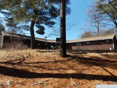 Columbia County Single Family Home For Sale: 711 Eichybush Road