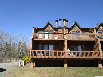 Windham Single Family Home For Sale: 10 Quads Way