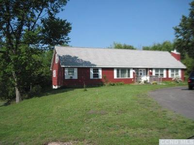 Albany County Single Family Home For Sale: 427 Route 405