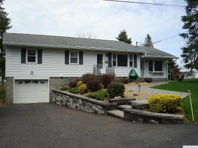 Albany County Single Family Home For Sale: 13 Cary St