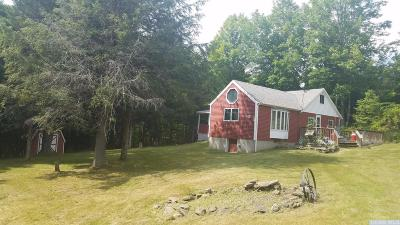 Prattsville Single Family Home For Sale: 43 Alpine View Road