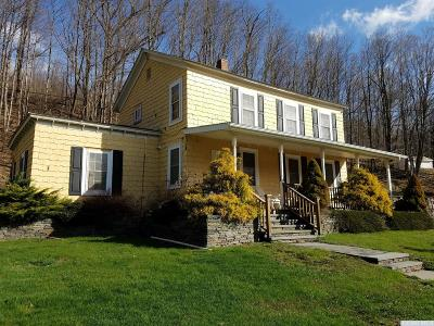 Windham Single Family Home For Sale: 5568 State Route 23