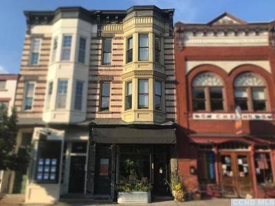 Hudson Single Family Home For Sale: 438 1/2 Warren Street