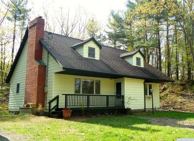 Claverack Single Family Home For Sale: 71 Dunbar Road