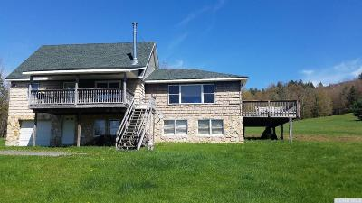 Windham Single Family Home For Sale: 166 County Route 56