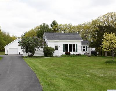 Albany County Single Family Home For Sale: 414 County Route 405