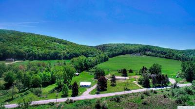 Ancram NY Single Family Home For Sale: $225,000