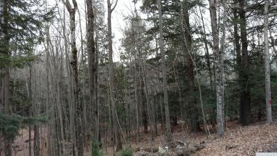 Windham Residential Lots & Land For Sale: Old Rd.