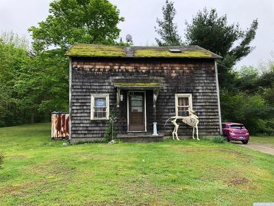 Kinderhook NY Single Family Home For Sale: $115,000