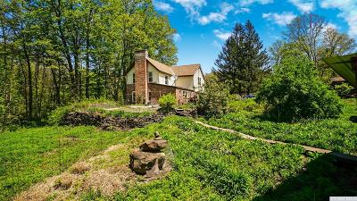 Greene County Single Family Home For Sale: 157 Moorehouse Rd East Road