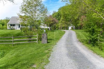 Chatham Single Family Home For Sale: 157 County Route 17