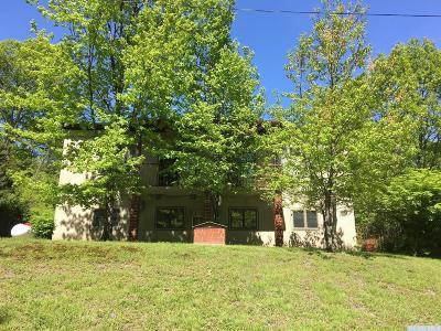 Copake Multi Family Home For Sale: 86 Lake Shore Acres Road