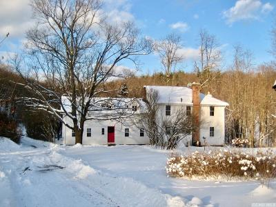 Dutchess County Single Family Home For Sale: 696 Salisbury Turnpike
