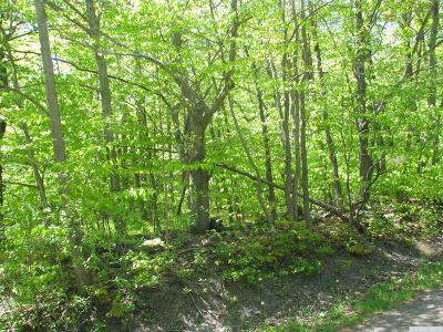 Albany County Residential Lots & Land For Sale: Bradt Hollow Road