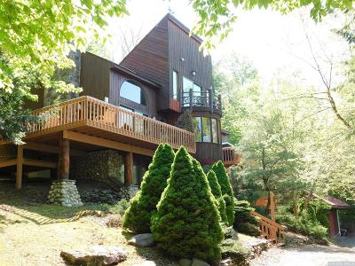 Windham NY Single Family Home For Sale: $825,000