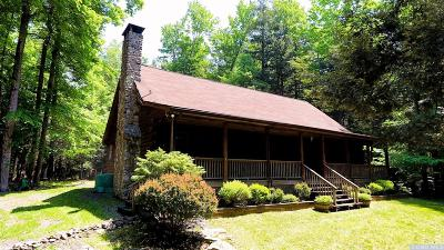 Greene County Single Family Home For Sale: 91 Crystal Point Road