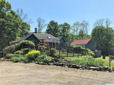 Dutchess County Single Family Home For Sale: 4808 Route 44