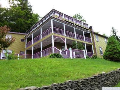 Greene County Multi Family Home For Sale: 5326 Route 23a