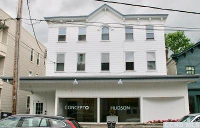 Hudson Multi Family Home For Sale: 741 Warren Street