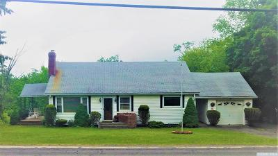 Windham Single Family Home For Sale: 313 State Route 296