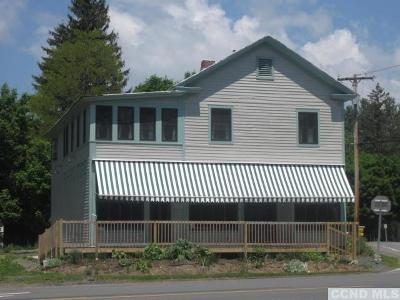 New Lebanon Single Family Home For Sale: 528 Route 20