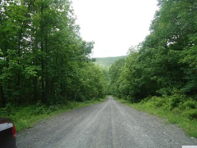 Albany County Residential Lots & Land For Sale: Arnold Road & Edwards Hill