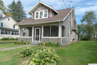 Albany County Single Family Home For Sale: 28 County Route 1