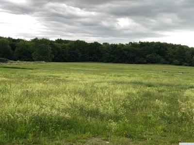 Kinderhook Residential Lots & Land For Sale: Cr 28b