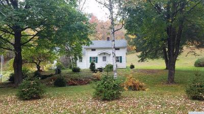 Greene County Single Family Home For Sale: 503 Route 11