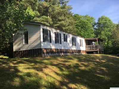 Prattsville Single Family Home For Sale: 7210 Airport Rd