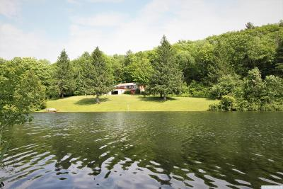 Columbia County Single Family Home For Sale: 144 Peaceful Valley Rd.