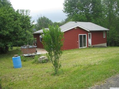 Albany County Single Family Home For Sale: 331 Cheese Hill Road