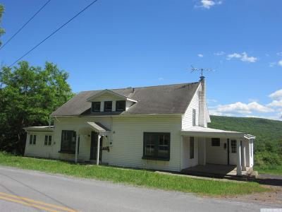 Windham NY Single Family Home For Sale: $185,000